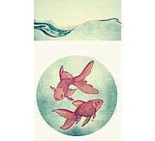 Goldfishes Photographic Print