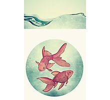 Goldfishes Photographic Print
