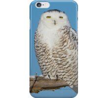 A snowy stare iPhone Case/Skin