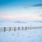 Winter Dawn by Heidi Stewart