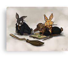 Hare-y Potter Canvas Print