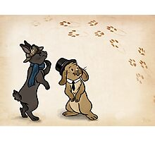 Sherlock and Watson Bunnies Photographic Print