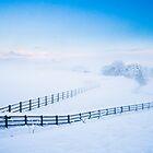 Fencelines in the Snow by Heidi Stewart