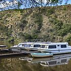 House boats ~ Breede River by Pieta Pieterse