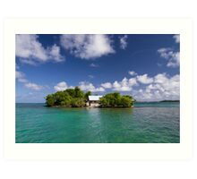 House on Island Art Print