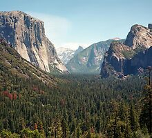 Yosemite Valley by Daniel Regner