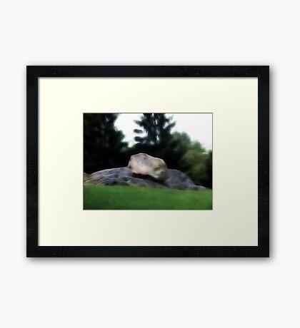 Central Park Rocks Framed Print