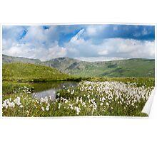 Cotton Tarn, Lake District National Park Poster
