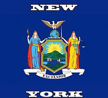 Smartphone Case - State Flag of New York - Horizontal V by Mark Podger