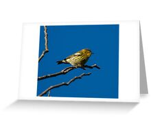 Morning Blackburnian Warbler Greeting Card