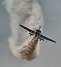 Is This Enough Smoke ?? - Gerald Cooper - Dunsfold 2013 by Colin  Williams Photography