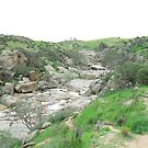 The Cascades & Falls, Mannum Gorge, S.A. by Rita Blom