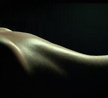 Bodyscape Laura Christina 3 by Dagger133