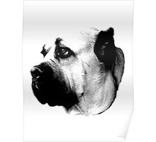Mournful Dog Engraving Poster