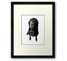 Regretful Dog Puppy Face Engraving Image Picture Framed Print
