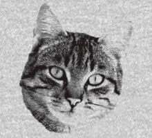 Tabby Cat Digital Engraving. Images of Cats Kids Clothes