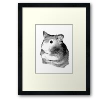 Golden Hamster Digital Image and Engraving Framed Print