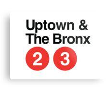 Uptown & The Bronx Metal Print
