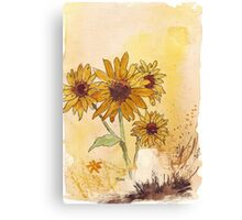 Sunflowers (Helianthus annuus) Canvas Print