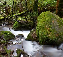 Edged in Green by Greg McMahon