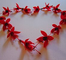 love heart with fuchsias by scarlettscoo