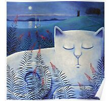 Blind white cat on a moonlit night. Poster