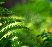 Fern Leaf. Healing Art by JennyRainbow
