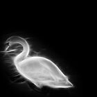 Fractal Swan - Black and White by PatiDesigns
