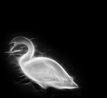 Fractal Swan - Black and White by Patrycja Polechonska