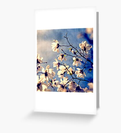 To The Sky Greeting Card