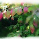 Shades of autumn by Heather Thorsen