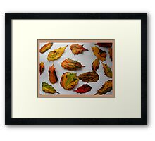 Raw Materials for Eco Friendly Art. Framed Print