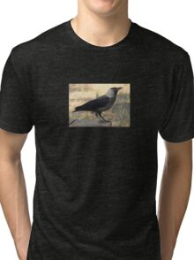 Side View Of A Wild Jackdaw Tri-blend T-Shirt
