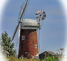 Horsey Mill Windpump Norfolk by Avril Harris