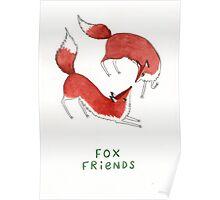 Fox Friends Poster