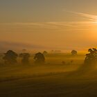 September Morning II by John Dunbar