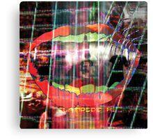 Animal Collective - Centipede Hz Canvas Print