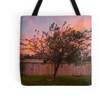Tree Sunset in Poatina Tote Bag