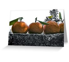 A wall of tangerines 1 Greeting Card