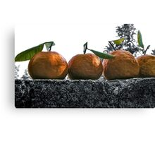 A Wall Of Tangerines 1 Canvas Print