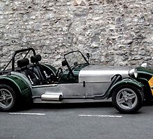 A Very Neat Car by lynn carter