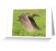 Off to his hideaway Greeting Card