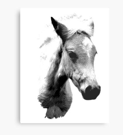 Horse Face and Head. Digital Farm Animal Engraving Image Metal Print