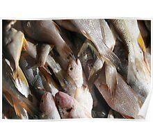 Fish at the Market Poster