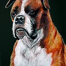"""Big Boy"" Portrait Of A Boxer Dog by Susan Bergstrom"