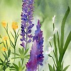 Lupines by Diane Hall