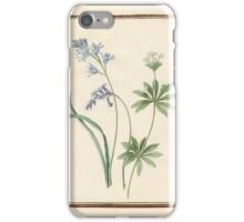 Circle of Madeleine Françoise Basseporte  Hyacinthus (left). Queen-of-the-meadow, meadow-sweet (Filipendula palmata) (right) iPhone Case/Skin