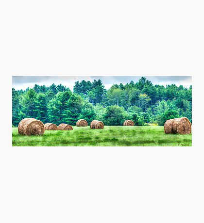 Maine Countryside Photographic Print