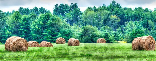 Maine Countryside by Richard Bean
