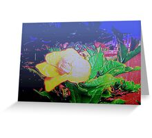 Our tropical nights Greeting Card